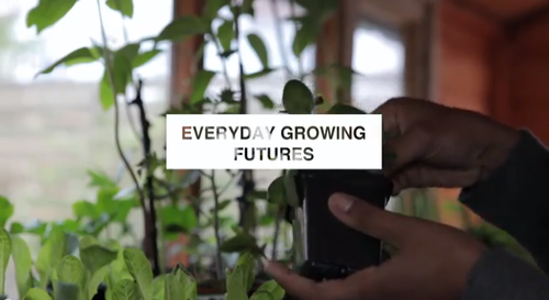 Everyday Growing Futures